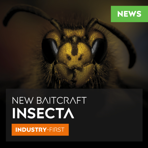 INSECTA HAS ARRIVED - SPRING 2020